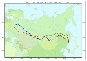 Trans Siberian
