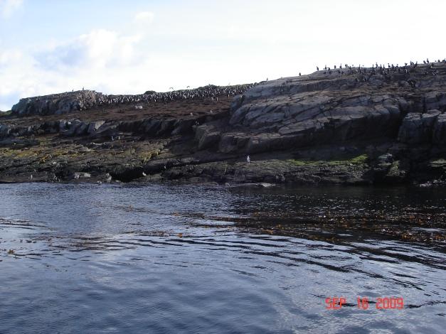 Ushuaia (9)