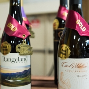 cc wines1