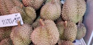 b durian