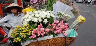h flower lady